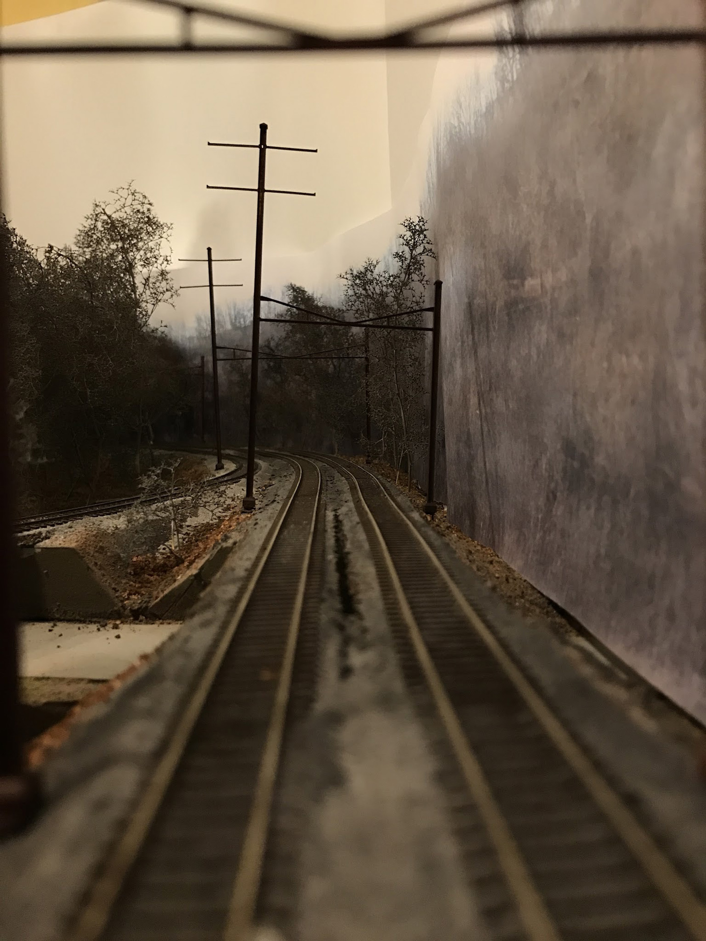 Josh Surkosky Photo